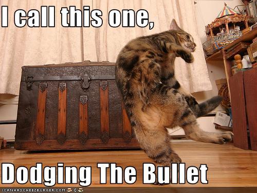phew dodged  bullet  bryana